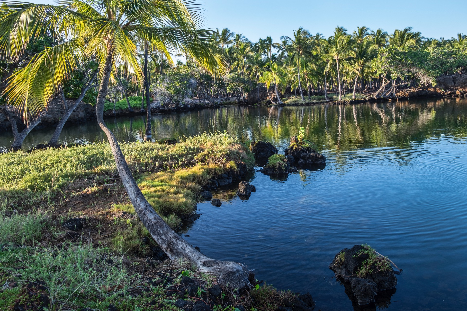 Hawaii 2016